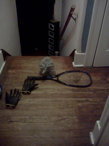 The essentials of bat whacking: gloves, a tennis racket, and a bag to dispose of the body.