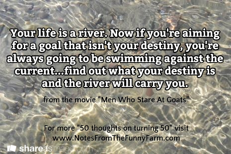 life is a river