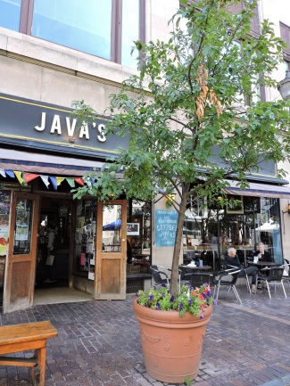 Java's on Gibbs Street.