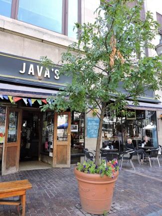 Java's on Gibbs Street.