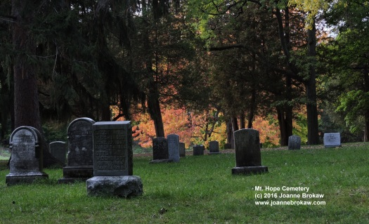 marked-2016-11-01-mt-hope-fall-196-2